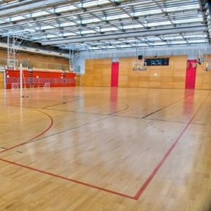 usage_pvc vinyl flooring for sports_basketball tennis_China manufacturer